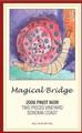 Magical_bridge_pn-1